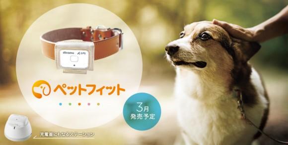 ドコモ、愛犬を見守る「ペットフィット」発表。脱走時にはGPSで探せる!