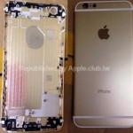 iPhone6の背面パネル