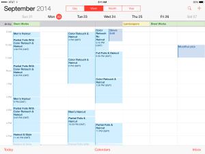 Apple iOS8 カレンダー 不具合
