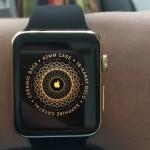 Apple Watch Edition 開封動画