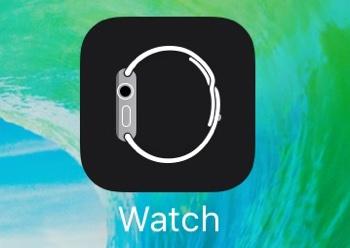 Apple Watch アプリ 名称変更