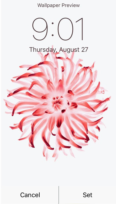 iPhone6sのアニメーション壁紙