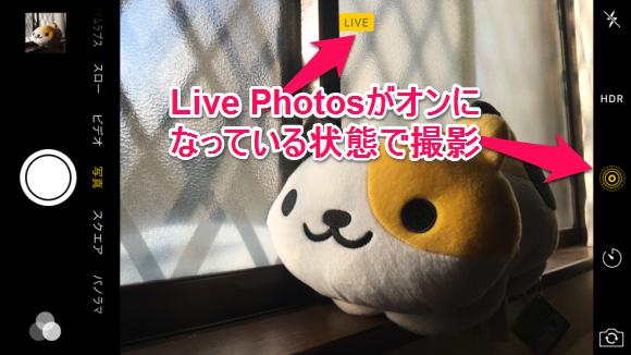 シャッター音 鳴らない 撮影 Live Photos