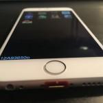 Apple iPhone6 試作機 オークション