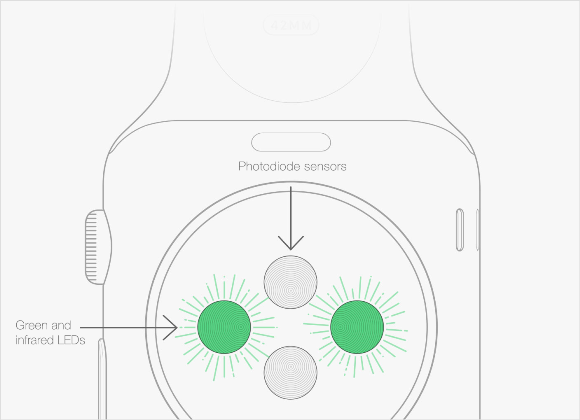 Apple Watch 心拍数センサー