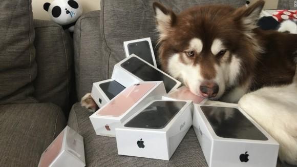 iPhone7とココちゃん