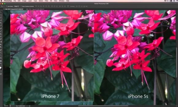 iPhone7 Plus 写真