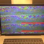 MacRumors フォーラムメンバー MacBook Pro 画面異常