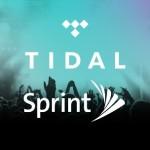 Sprint Tidal