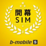 b-mobile S ソフトバンク 日本通信