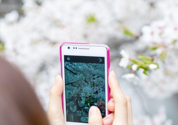ぱくたそ iPhone 撮影