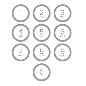 Apple サポート パスコード