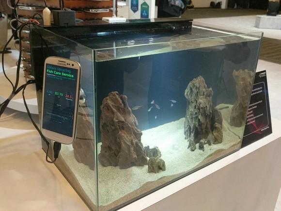 Galaxy S3を水槽の監視に活用