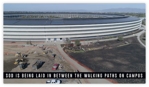 Apple Park Matthew Roberts Feb 2018