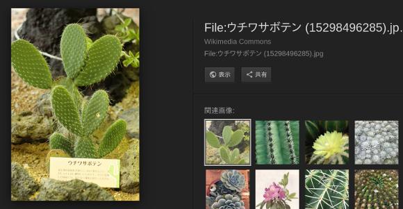 Google画像検索の「画像を表示」ボタンが取り払われる〜著作権保護が目的か