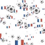 Apple フランス ワールドカップ