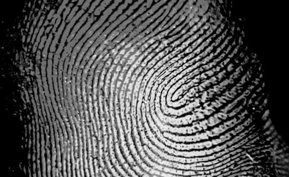 指紋認証 galaxy s10 超音波