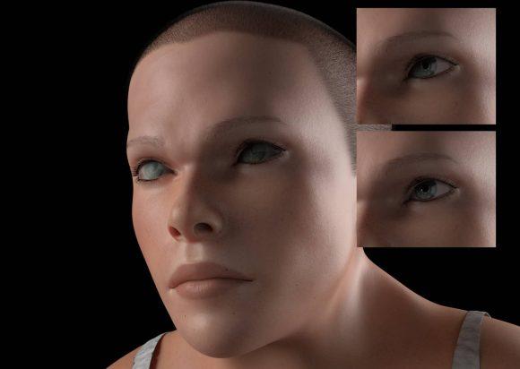3dモデル 進化 人類