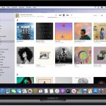 macos-catalina-apple-music-library