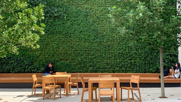 Apple Storeの壁面緑化
