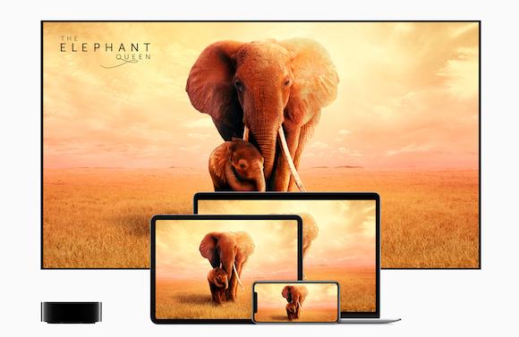 Apple TV+ ゾウの女王 〜偉大な母の物語〜