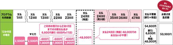 NTTドコモ「いつでもカエドキプログラム」